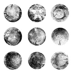 Set of tree rings background. For your design conceptual graphics. Vector illustration. Isolated on white background.