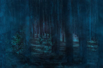 transparent and ghostly blue fog in the night forest with tall pines nobody around