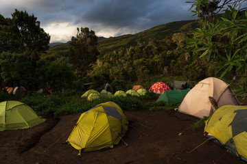 Tents in Machame Camp, Kilimanjaro National Park