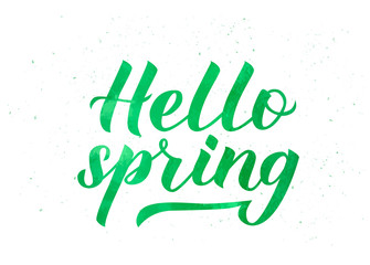 Hello spring hand written with brush. Watercolor painting effect. . Inspirational seasonal quote typography poster. Hand written logo design. Easy to edit vector template for banner, flyer, badge.