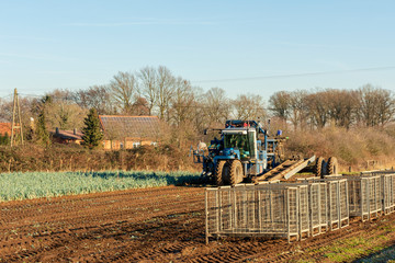 Lauch-Erntemaschine Standort: Deutschland, Nordrhein-Westfalen, Borken
