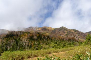 Tsugaike Nature Park in autumn