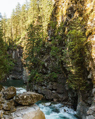 Coquihalla river Idyllic landscape with green forest in British Columbia Canada.