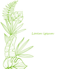 Postcard template with tropical leaves. Linear illustration. Hand-drawn picture. Vector
