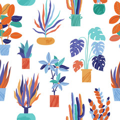 Brightly colored seamless pattern with stylized houseplants, house plants - monstera, cactus, ficus in pots, vector illustration on white background. Funky houseplants, house plants seamless pattern