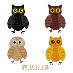 Set of owl collection