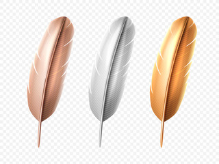 Set of isolated white and bronze, golden bird realistic feather. Soft or lightweight quill of peacock or swan, angel or dove, hen. Plume or fluff from wing. Colorful decoration and indian feathering
