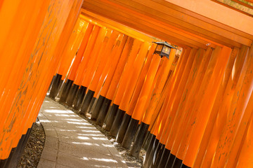 京都伏見稲荷大社