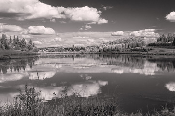 Summer view of the water surface of the river with overgrown picturesque banks and Cumulus clouds in the blue sky, monochrome, toned.