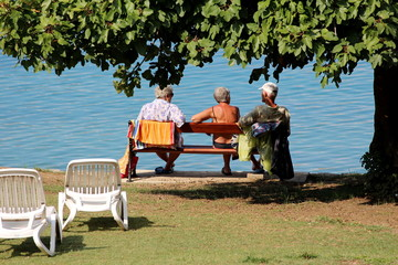 Older people sitting and relaxing on public bench next to sea under old tree with dense dark green leaves surrounded with grass and plastic beach chairs in background on warm sunny summer day