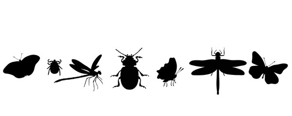 Illustration of set animals icon. Vector silhouette on white background. Symbol of insect.
