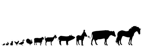 Illustration of set animals icon. Vector silhouette on white background. Symbol farm´s cattle.