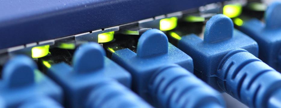 RJ45 Stecker in einem Router