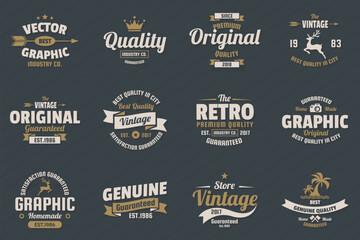 Vintage Retro Vector Logo for banner