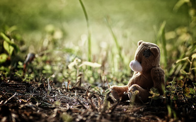 lost toy on the ground