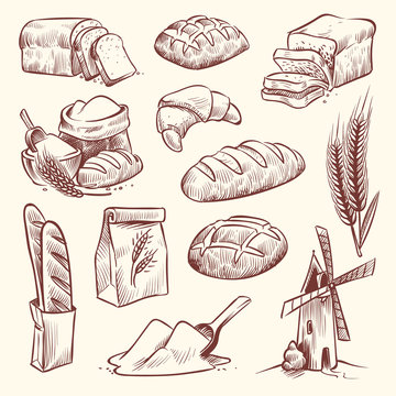 Bread sketch. Flour mill baguette french bake bun food wheat traditional bakery basket grain pastry toast slice set