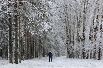 winter snow sport man run in tree park