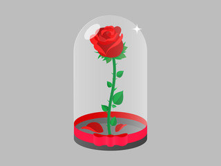 Frozen Rose in a flask of glass Illustration Vector