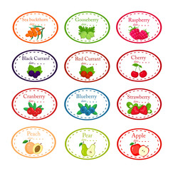 Big set of different labels for jam and conservs with garden fruits and berrieis vector illustration