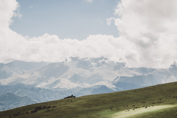 Closeup view mountains and valley scenes in national park Dombai, Caucasus