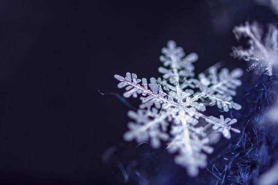 Single snow flake on dark blue background