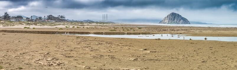 Pacific Coast Highway (Highway 1), Big Sur, Morro, Cambria, Elephant Seals, California