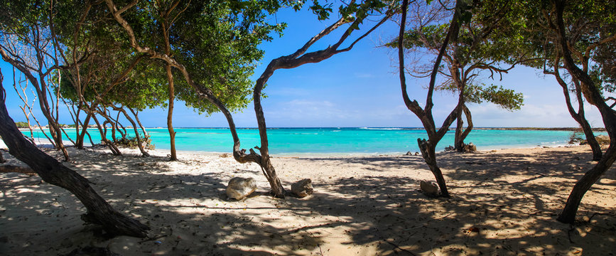 Panoramic view of the white sand and turquoise water of Baby Beach Aruba