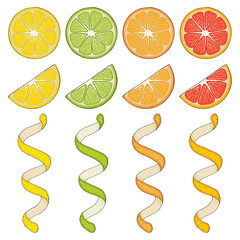 Collection of hand drawn elements, lemon, grapefruit, orange, lime, slice and spiral. Objects for packaging, advertisements. Isolated image. Vector illustration.