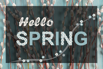 Banner with a photo on a blue background and willow branches. Greeting banner on the topic hello spring. Collage from photo of willow branches, inscription hello spring