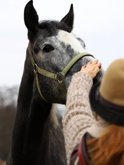 woman greeting her horse