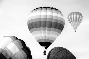 Black and White Hot Air Balloons in Flight