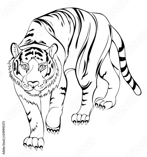 Stylized Tiger Black And White Page For Coloring Book