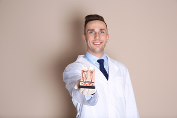 Male dentist holding teeth model on color background