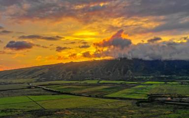 Poster Cultuur Maui