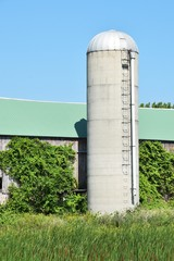 Silo by the Barn