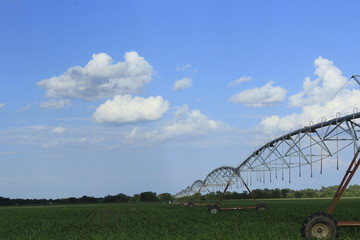 irrigation of a field with blue sky.