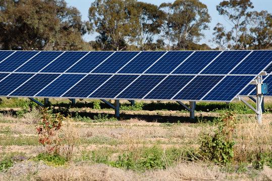 Solar panels in paddock at farm, South Australia