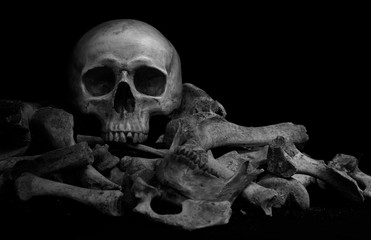 The skull on pile  of bone on black background And adjustment color black and white for background, and space for texts.
