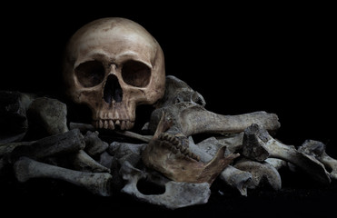 The skull on pile  of bone on black background