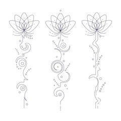 Unalome lotus flower vector lineart tattoo set isolated on a white background.