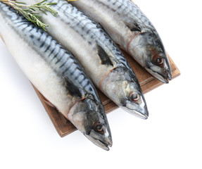 Wooden board with tasty raw mackerel fish on white background