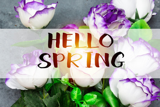 beautiful  flowers with hello spring concept