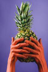 cropped view of woman holding ripe pineapple fruit in coral colored hands on violet background, color of 2019 concept