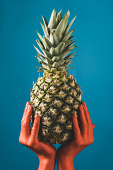 partial view of woman holding ripe pineapple fruit in coral colored hands on blue background,  color of 2019 concept