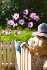 Warm Late Summer Day at Garden / Gardener teddy bear wear traditional farmer hat, looking over garden fence with old rusty pot on top, flowers in bloom at background