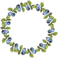 Vector Blueberry blue and green engraved ink art. Berries and green leaves. Frame border ornament square.