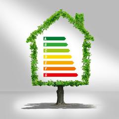 maison écologie,échelle énergétique