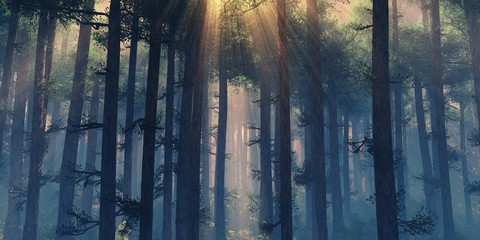 Forest in the fog, haze in the forest, smoking forest, trees in the morning in the fog, panorama of the smoking forest