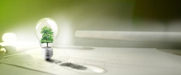 maison écologie,arbre et ampoule