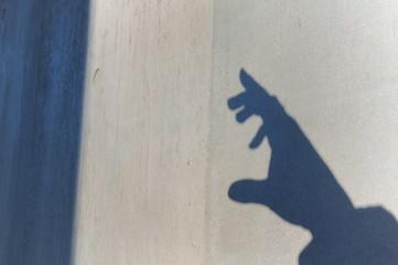 壁と手の影